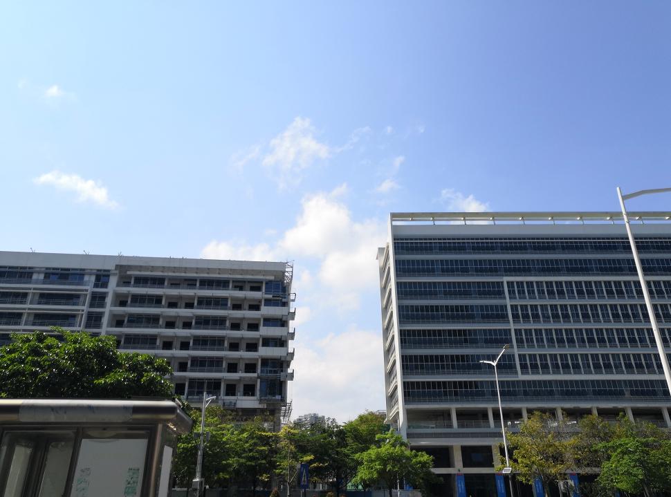 深圳外国语小学产权归政府所有 东海花园业主子女就读协议已终止